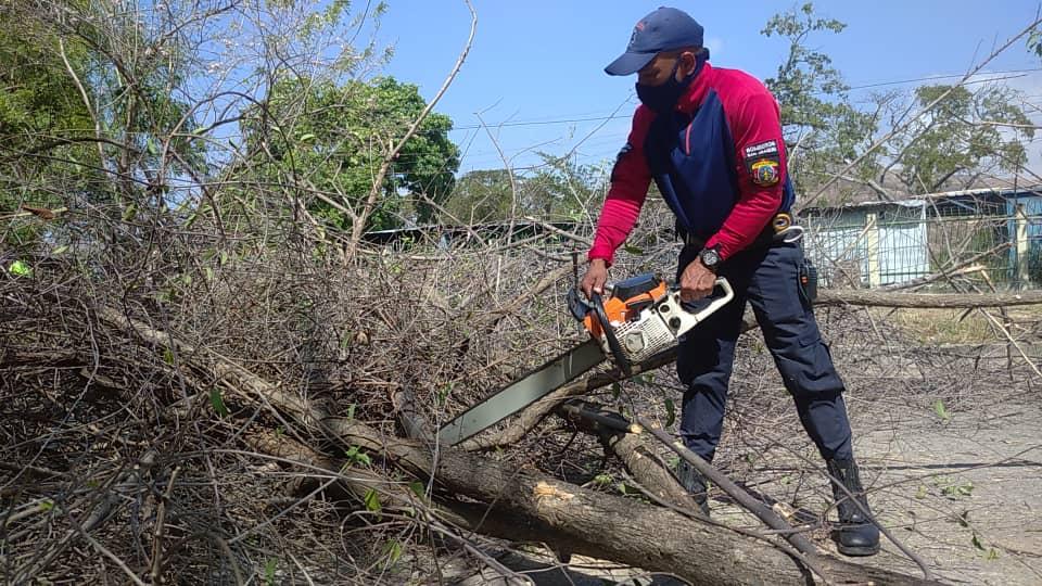 Plan de recuperación y mantenimiento en San Joaquín - N24C