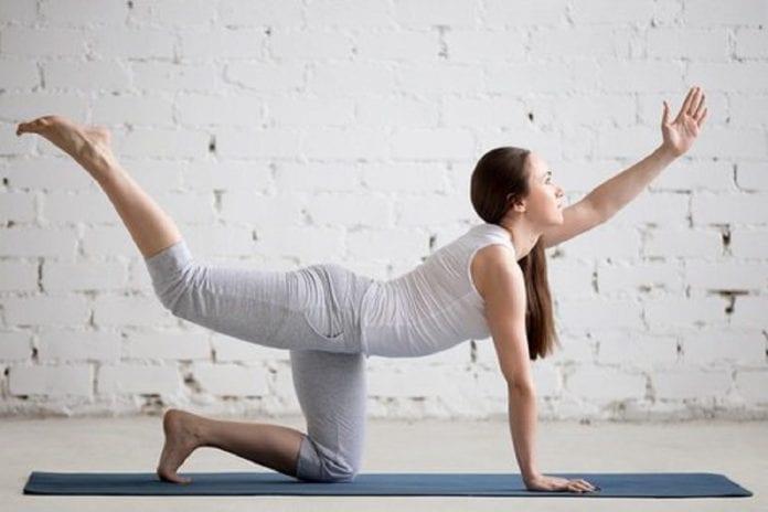 Músculos de la espalda baja - Músculos de la espalda baja