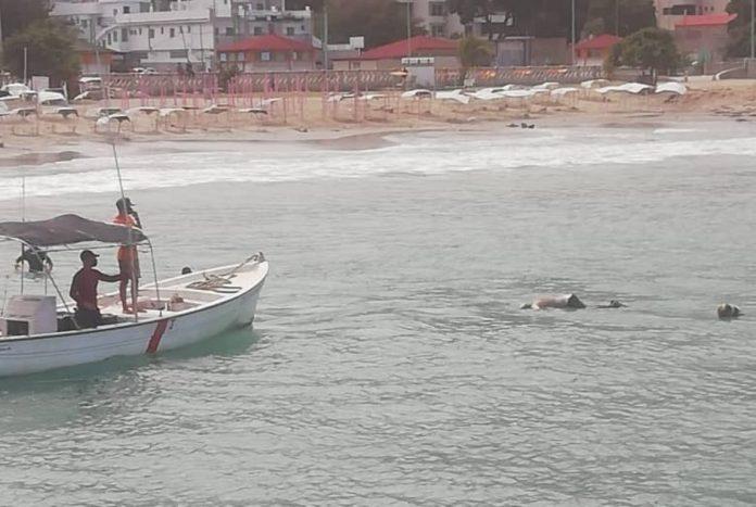 cuerpo de un hombre en playa de La Guaira - cuerpo de un hombre en playa de La Guaira