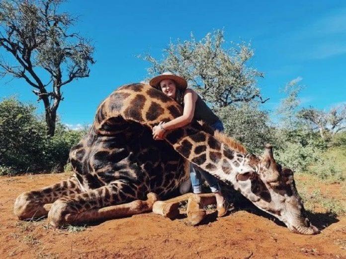 Mujer cazó a una jirafa - Mujer cazó a una jirafa