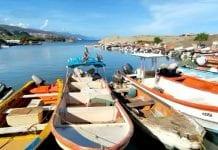 Ballenas en aguas venezolanas - Ballenas en aguas venezolanas