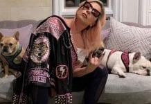 Lady Gaga recuperó sus dos perros