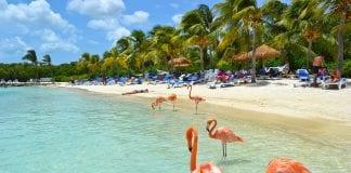 Vuelos a Aruba - Vuelos a Aruba