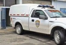 Hombre falleció aplastado por una vaca Guárico
