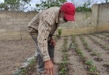 FAO reanudará la transferencia de ayudas monetarias a familias en Venezuela