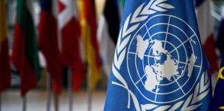 Relatora Especial de la ONU