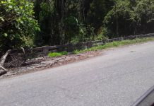 Carretera Panamericana de Carabobo - Carretera Panamericana de Carabobo