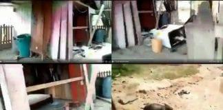 Bombardean casa en Los Cañitos en Apure - Bombardean casa en Los Cañitos en Apure