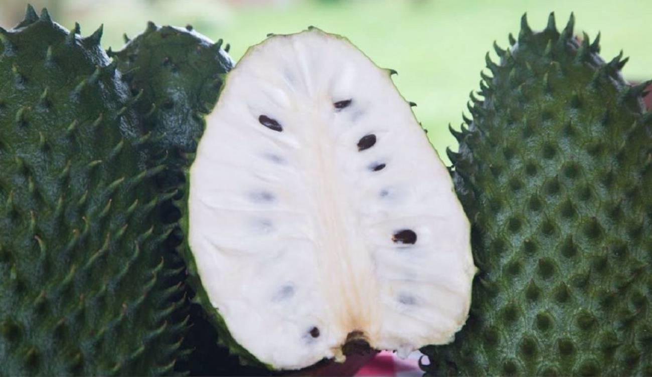 Beneficios de la guanábana - Beneficios de la guanábana