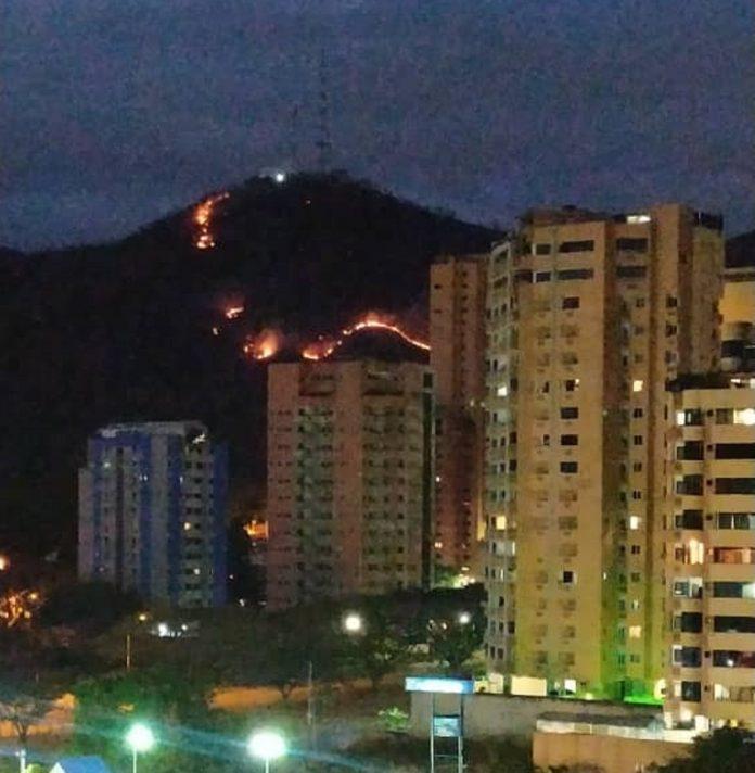 Incendio forestal azota a vecinos de El Trigal - Incendio forestal azota a vecinos de El Trigal