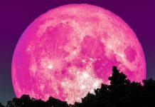 Súper Luna Rosa - Súper Luna Rosa