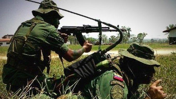 Tregua entre FANB y FARC - Tregua entre FANB y FARC