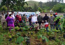Sembraron 200 árboles en Parque Nacional San Esteban