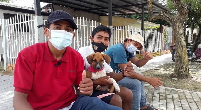 Perrita venezolana viajó 60 días a pie con sus dueños desde Ecuador