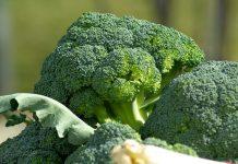 Propiedades del brócoli - Propiedades del brócoli