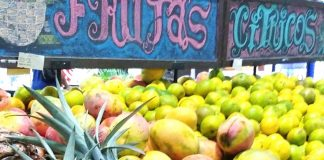 Precio de las frutas en Valencia - Precio de las frutas en Valencia