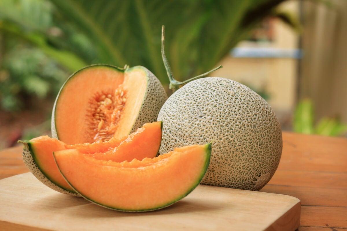 El melón - El melón