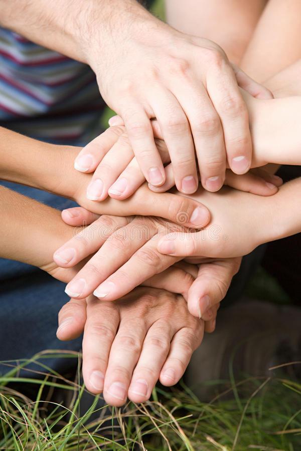 Unión familiar - Unión familiar