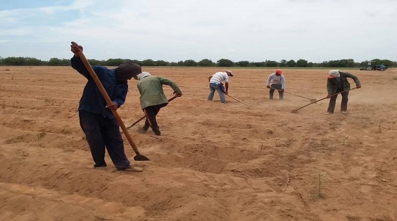 funcionarios del INTI Guárico - funcionarios del INTI Guárico