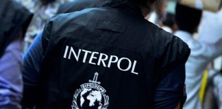 "Interpol desplegó ""Operación Liberterra"" - Interpol desplegó ""Operación Liberterra"""