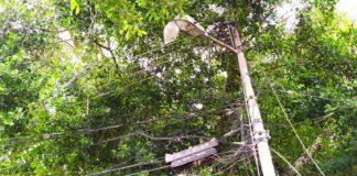 Tendido eléctrico amenaza las casas de La Isabelica