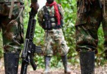 FARC asesina a uno de sus sicarios - FARC asesina a uno de sus sicarios