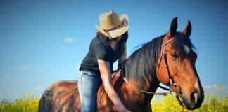 Montar a caballo - Montar a caballo