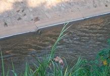 cadáver de una mujer en el río Guaire