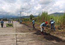 Plan integral de mantenimiento en la urbanización Manantial