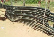 Banda dedicada al hurto de cableado eléctrico desmantelada en Nueva Esparta
