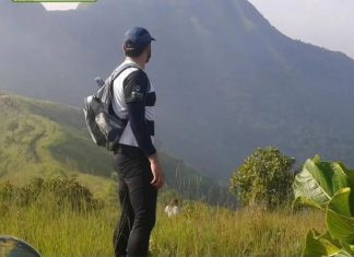 Robos en el cerro de Yagua - Robos en el cerro de Yagua
