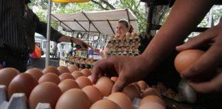 Precio de huevos y queso en Valencia - Precio de huevos y queso en Valencia