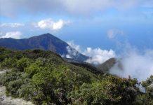 Senderista del cerro Kairoi - Senderista del cerro Kairoi