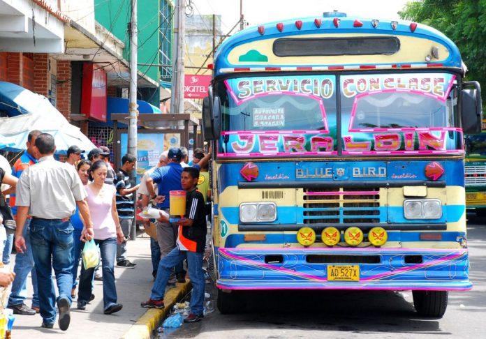 Transporte en yagua - Transporte en yagua