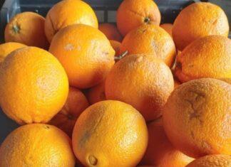 naranja - naranja